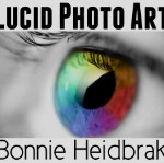 Bonnie Heidbrak opened Lucid Photo Art to feature her unique and artistic photos, which are available to purchase for your home, your office or any commercial space.